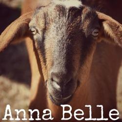 bfsc-staff-annabelle-small.jpg